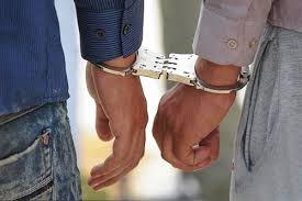 فرمانده انتظامی داراب خبر داد؛ دستگیری ۹ سارق حرفهای و کشف ۲۷ فقره سرقت در شهرستان داراب