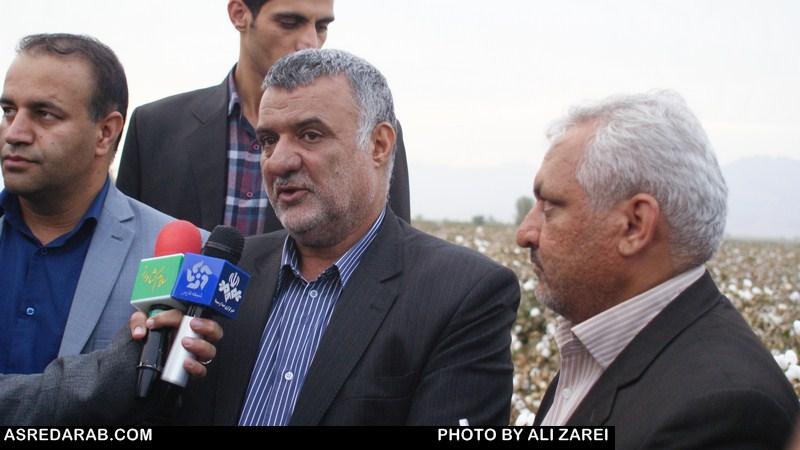 بازدید وزیر جهادکشاورزی از مزارع پنبه داراب/ بذر جدید راندمان بالایی دارد
