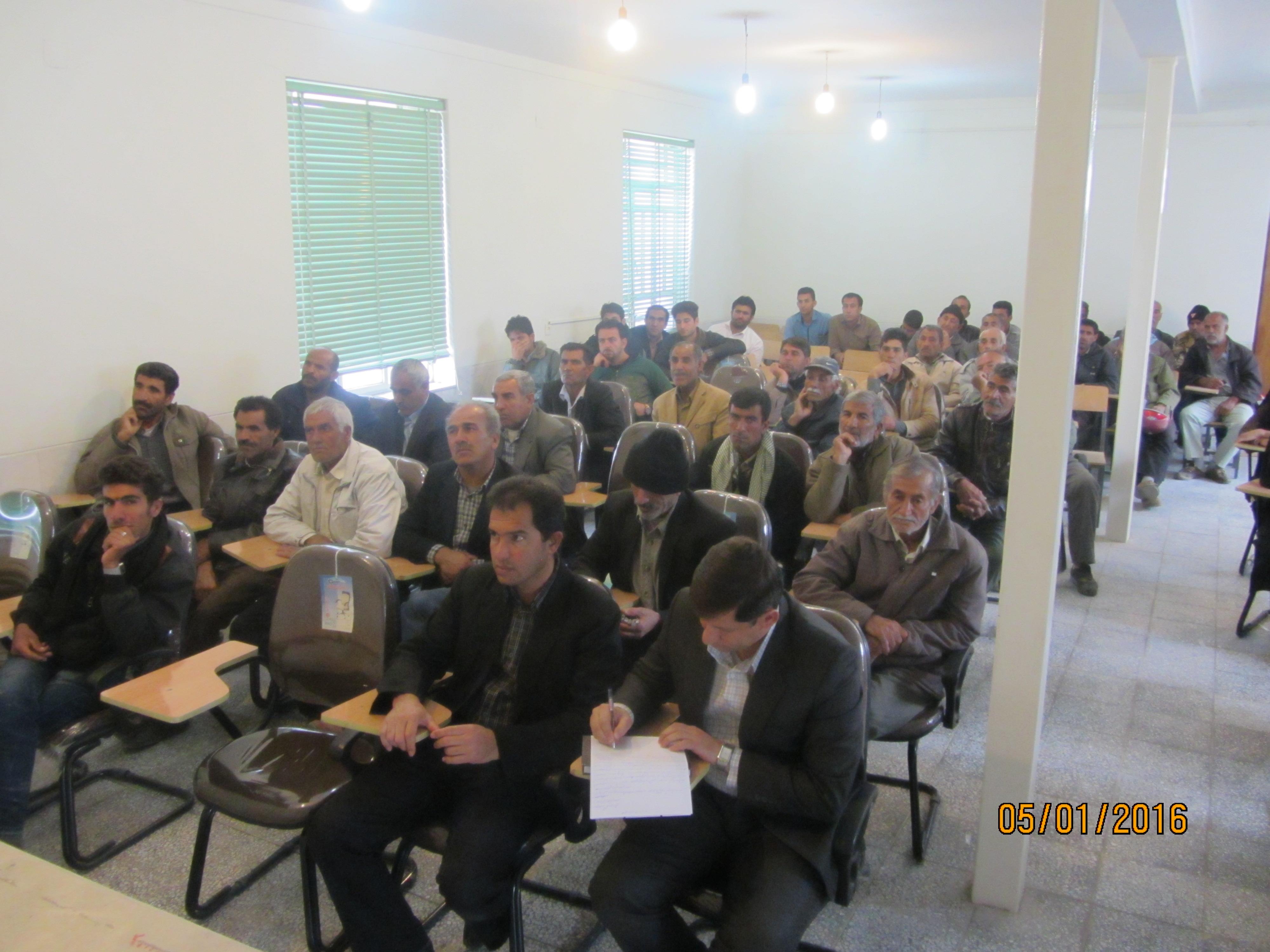 رنجبر مسئول اداره بهبود تولیدات دامی: با تشکیل  صندوق شیر در شهرستان داراب  مشکلات دامداران مرتفع می گردد