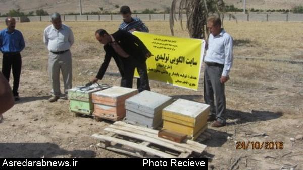 کارگاه آموزشی تولید زهر زنبورعسل در شهرستان داراب برگزار گردید/ زهر زنبور عسل ۳ برابر طلا ارز آوری دارد