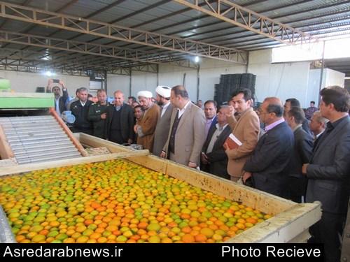 افتتاح طرح های کشاورزی بخش فورگ شهرستان داراب در دهه مبارک فجر