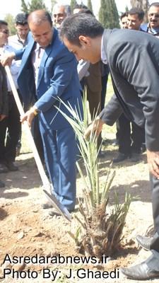 گرامی داشت روز درختکاری و هفته منابع طبیعی  در دانشکده کشاورزی و منابع طبیعی داراب
