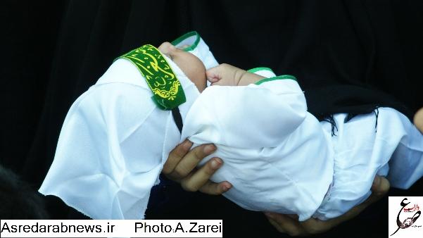 محرم در داراب/ گزارش تصویری