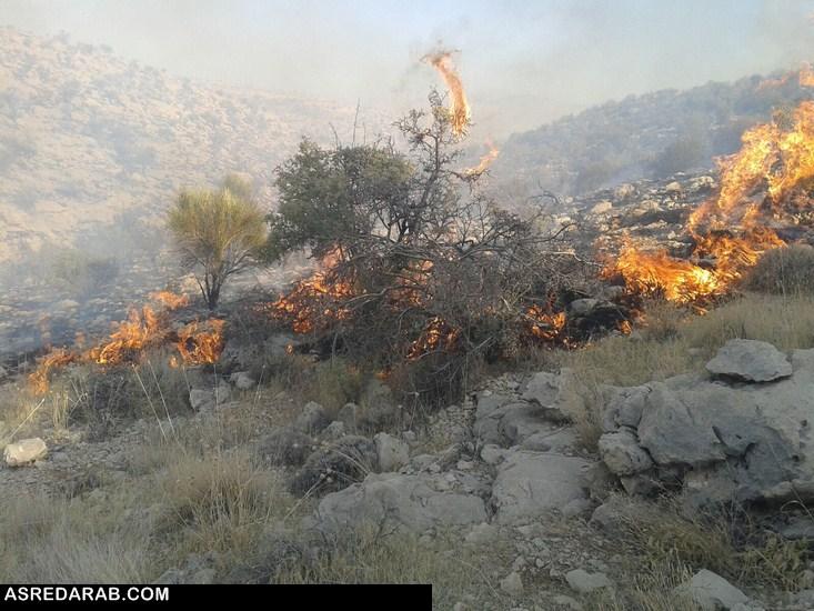 رئیس اداره منابع طبیعی و آبخیزداری شهرستان داراب خبر داد: عامل آتش سوزی منابع طبیعی داراب به ۵ سال حبس تعزیری محکوم شد
