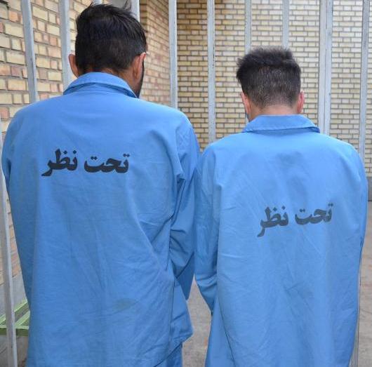 ۵ سارق حرفه ای در داراب دستگیر شدند