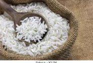 رییس اداره صنعت، معدن، تجارت: کمبود برنج در بازار به دلیل عدم قیمت گذاری توسط دولت است