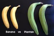 فروش پلانتین بجای موز در برخی از واحدهای فروش میوه