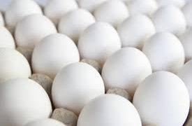 گرانی های افسار گسیخته به تخم مرغ و مرغ هم رسید/ تدابیر بی فایده دولتمردان، سفره مردم را کوچک تر کرده است