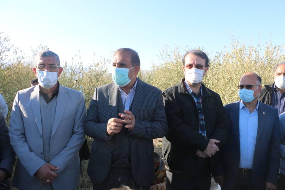 بازدید تیم مدیریت بحران وزارت جهاد کشاورزی از باغات سرمازده شهرستان داراب