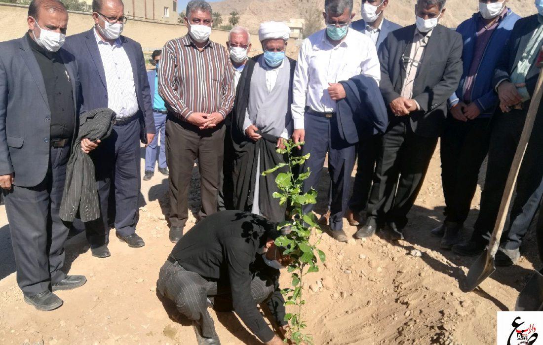 شهردار داراب در آیین روز درختکاری: با سنت حسنه کاشت درخت به نیت درگذشتگان، می توان در سال ۱۵ هزار درخت در داراب کاشت