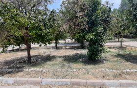 بررسی وضعیت مدیریت پارک های داراب، اندکی فضای سبز و تٱسیساتی غیر قابل استفاده